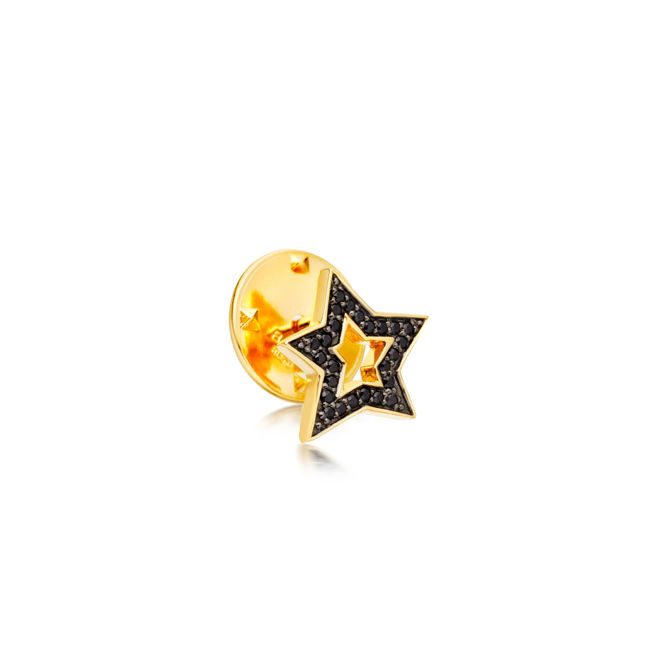 Star Biography Pin
