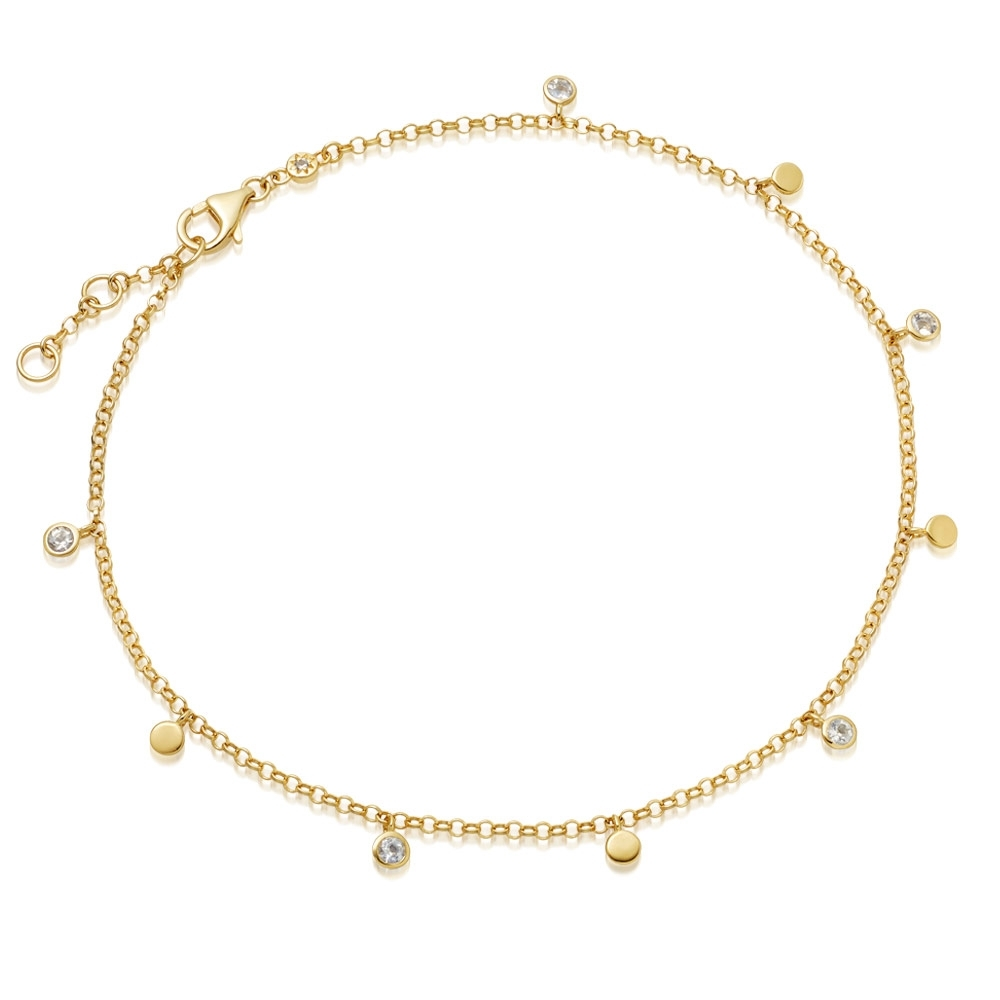 Biography Moonstone Droplet Anklet